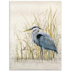 Artland Glasbild Reiherschutzgebiet II, Vögel (1 Stück) 45 cm x 60 cm x 1,1 cm