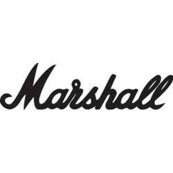 Marshall MS-2C E-Gitarrenverstärker Grau