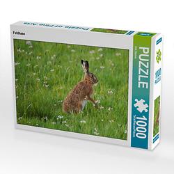 Feldhase Lege-Größe 64 x 48 cm Foto-Puzzle Bild von Dirk Stamm Puzzle