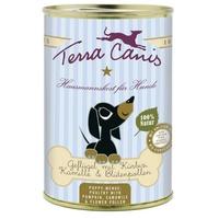 Terra Canis Welpe Geflügel mit Kürbis, Kamille und Blütenpollen 400 g
