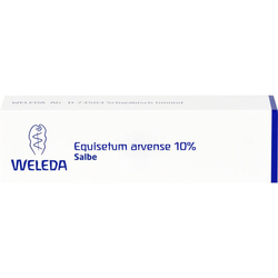 EQUISETUM ARVENSE 10% Salbe 25 g