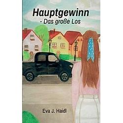 Hauptgewinn - Das große Los. Eva J. Haidl  - Buch