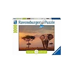 Elefant in Masai Mara National Park (Puzzle)
