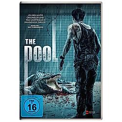 The Pool - DVD  Filme