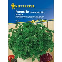 Petersilie (Aromapetersilie) Afrodite