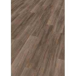 EGGER Laminat HOME Ampara Eiche grau, Packung, ohne Fuge, 2,481 m²/Pkt., Stärke: 7 mm