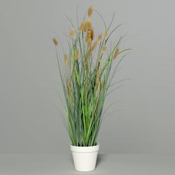 Kunstpflanze Gras (H 71 cm)
