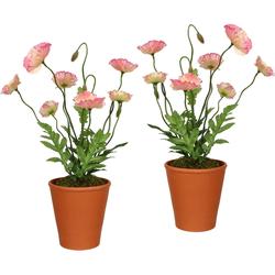 Künstliche Zimmerpflanze (2 Stück), Kunstpflanzen, 23429013-0 rosa H: 38 cm rosa