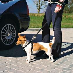 Trixie Auto-Sicherheitsgeschirr, Größe: L / z.B. Labrador