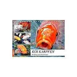 Koi Karpfen. Blickfang und Glücksbringer (Tischkalender 2021 DIN A5 quer) - Kalender