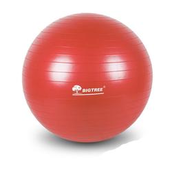 BIGTREE Gymnastikball Gymnastikball für Fitness rosa Ø 65 cm
