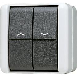 Jung 809VW,Jalousie-Wippschalter, Schalter 1-pol. (1Antrieb), 10 AX 250 V ~, IP44, WG800