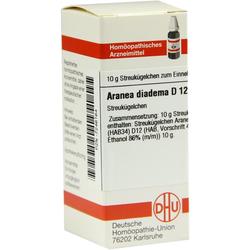 Aranea Diadema D 12 Globuli