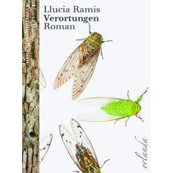 Verortungen als Buch von Llucia Ramis