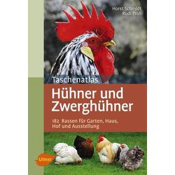 Taschenatlas Hühner und Zwerghühner