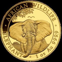 1 Unze Gold Somalia Elefant 2021