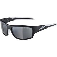 Alpina Testido A8514331 black matt-white / black