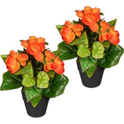 Künstliche Zimmerpflanze Eleonore Begonien, DELAVITA, Höhe 24 cm, 2er Set orange 15 cm x 24 cm