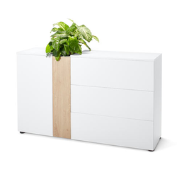 Bepflanzbares Sideboard