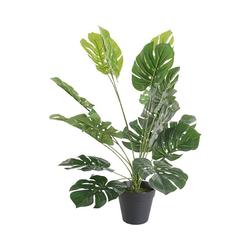 Kunstpflanze Monstera im Topf, H ca. 60 cm, Tawo