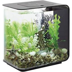 Oase 72029 Aquarium 15l mit LED-Beleuchtung