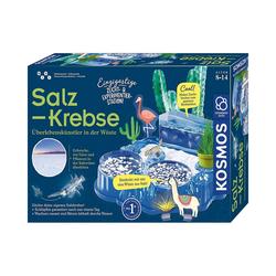 Kosmos Lernspielzeug Salzkrebse