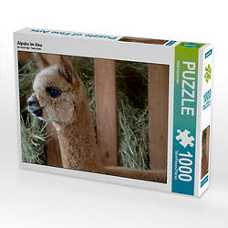 Alpaka im Heu Lege-Größe 64 x 48 cm Foto-Puzzle Bild von Heidi Rentschler Puzzle
