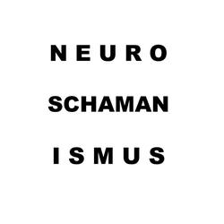 Neuroschamanismus: eBook von Tom de Toys