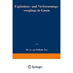 Explosions- und Verbrennungsvorgänge in Gasen. Wilhelm Jost  - Buch
