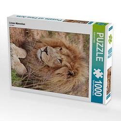 Löwen Männchen Lege-Größe 48 x 64 cm Foto-Puzzle Bild von Thula Puzzle