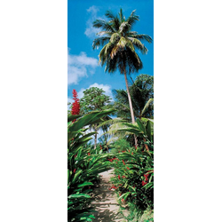 Papermoon Fototapete Palm Path - Türtapete, matt, (2 St), Vlies, 2 Bahnen, 90 x 200 cm