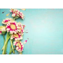 Platzset, Tischset I Platzset - Zweifarbige Blüten auf Türkis - 12 Stück aus hochwertigem Papier in Aufbewahrungsmappe 44 x 32 cm, Tischsetmacher, (12-St)