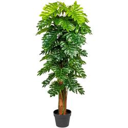 Künstliche Zimmerpflanze Monsterapflanze Grünpflanze, Creativ green, Höhe 120 cm