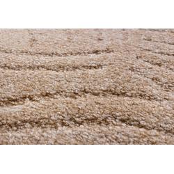 Teppichboden Amberg, Andiamo, rechteckig, Höhe 9 mm, Meterware, Breite 300 cm, Hoch-Tief Teppichboden natur
