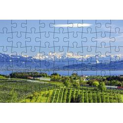 Puzzlepostkarte Bodensee Motiv See und Alpen
