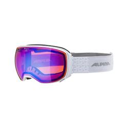 Alpina Skibrille big horn HM