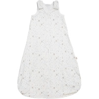 Ergobaby Classic Sleep Bag Silver Moons