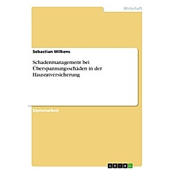 Schadenmanagement bei Überspannungsschäden in der Hausratversicherung. Sebastian Wilkens  - Buch