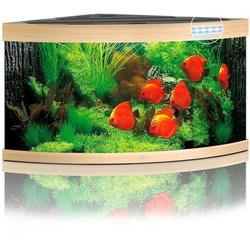 JUWEL Trigon 350 LED Aquarium, 350 Liter, beige