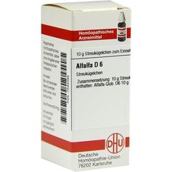 ALFALFA D 6