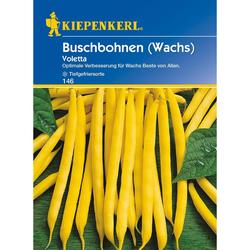 Buschbohnen (Wachs) Voletta