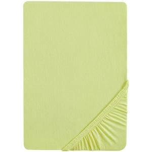 biberna 0077641 Jersey-Elastic Topper Spannbetttuch (Topperhöhe 8-12 cm) (Baumwolle/Elasthan) 180x200 cm-> 200x220 cm, pistaziengrün