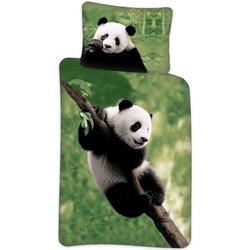 Kinderbettwäsche Panda - Wende-Bettwäsche-Set, 135x200 & 80x80 cm, TOP!, 100% Baumwolle