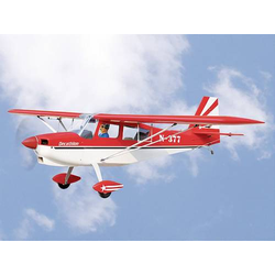 Bellanca Decathlon / 2450mm