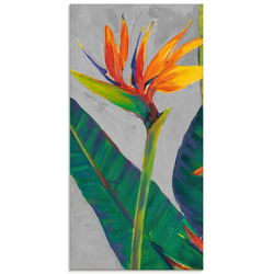 Artland Glasbild Paradiesvogel I, Pflanzen (1 Stück) 50 cm x 100 cm x 1,1 cm