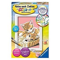Malen nach Zahlen - Jeder kann malen (Mal-Sets), Bildgröße: 8,5 x 12 cm: Katzenbabys