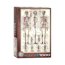 empireposter Puzzle Das menschliche Skelett - 1000 Teile Puzzle Format 68x48 cm., 1000 Puzzleteile