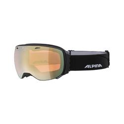 Alpina Skibrille big horn QHM