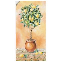 Artland Wandbild Zitronenbaum I, Pflanzen (1 Stück) 50 cm x 100 cm