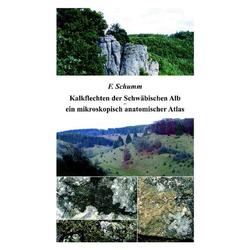 Kalkflechten der Schwäbischen Alb - ein mikroskopisch anatomischer Atlas als Buch von Felix Schumm/ F. Schumm